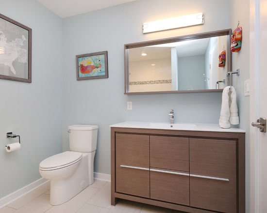 Thompson-remodeling-modern-and-clean-bath5